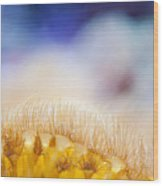 Yellow Coral Reef Macro Wood Print