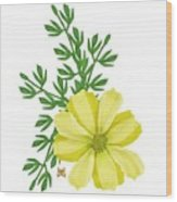 Yellow Cosmos Wood Print
