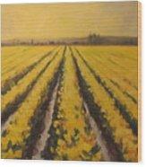 Yellow Daffodil Glow Wood Print