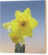 Yellow Daffodil On Canvas Wood Print