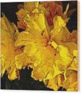 Yellow Daffodils 4 Wood Print