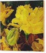 Yellow Daffodils 6 Wood Print
