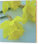 Yellow Daffodils Artwork Spring Flowers Art Prints Nature Floral Art Wood Print