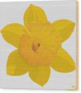 Yellow Daffodil Wood Print