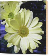 Yellow Daisies Wood Print