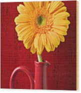 Yellow Daisy In Red Vase Wood Print