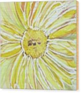 Yellow Daisy Portrait Wood Print
