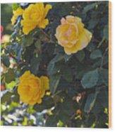 Yellow Daze Wood Print