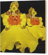 Yellow Dresses Wood Print