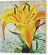 Yellow Easter Lily Wood Print
