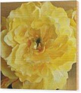 Yellow Elagance Wood Print