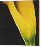 Yellow Essence Wood Print