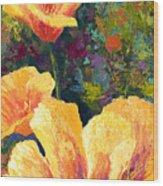 Yellow Field Poppies Wood Print