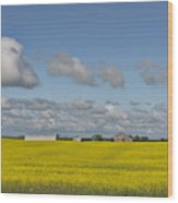 Yellow Fields And Blue Clouds Wood Print