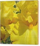 Yellow Floral Irises Flowers Art Prints Baslee Troutman Wood Print