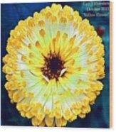 Yellow Flower H A Wood Print