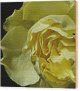 Yellow Flower On Black Wood Print