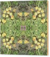 Yellow Flower Photo 1492 Composite Wood Print