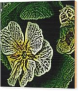 Yellow Flower Woodcut Wood Print