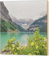 Yellow Flowers At Lake Louise Wood Print