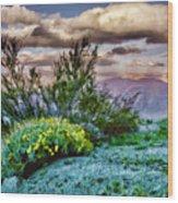 Yellow Flowers In The Desert Wood Print