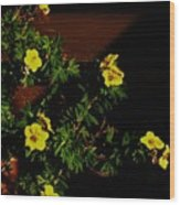 Yellow Flowers In The Sun Wood Print