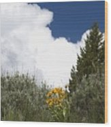 Yellow Flowers White Cloud Wood Print