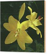 Yellow Garden Lilies Wood Print