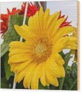 Yellow Gerbera Daisy Wood Print