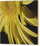 Yellow Gerbera Daisy By Kaye Menner Wood Print