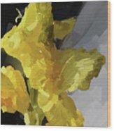 Yellow Glad 092217 1a Wood Print