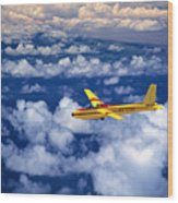 Yellow Glider Wood Print