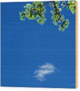 Yellow Green Flowers And Sky Ae 2  Wood Print