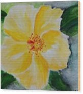 Yellow Hibiscus Wood Print