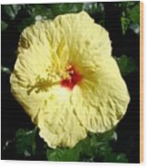 Yellow Hibiscus The Hawaiian State Flower Wood Print