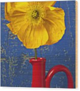 Yellow Iceland Poppy Red Pitcher Wood Print