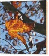 Yellow Leaf 1 Wood Print