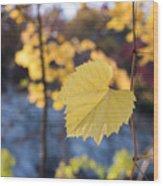 Yellow Leaf Newton Upper Falls Fall Foliage Wood Print