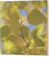Yellow Leaves. Wood Print