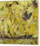 Yellow Leaves On The Ground  Wood Print
