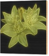 Yellow Lilies On Black Wood Print by Sandy Keeton