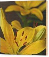 Yellow Lily Mirror Wood Print