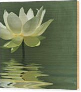 Yellow Lily With Reflections Wood Print