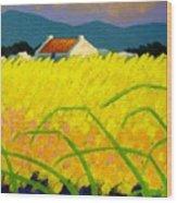 yellow Meadow Ireland Wood Print
