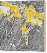 Yellow Moment In Time Wood Print