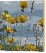 Yellow N Blue Wood Print