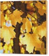 Yellow Nature Tree Leaves Art Prints Bright Baslee Troutman Wood Print