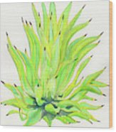 Yellow Octopus Agave Wood Print