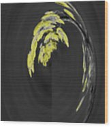Yellow On Gray 2 Wood Print