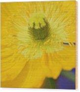 Yellow On Purple Wood Print